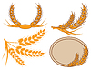 Vector clipart: ears of wheat in wreath