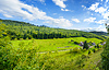 Panoramic view of black forest in Baden-Baden. | Stock Foto