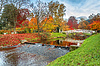 Beautiful autumn landscape with bridge and | Stock Foto