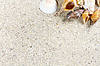 ID 5857847 | Travel background with sand and shells. Summer beach | High resolution stock photo | CLIPARTO