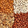 Different nuts (almonds, cashews, walnuts and filberts) | Stock Foto