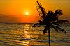 Photo 300 DPI: Tropical sunset
