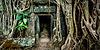 古石门和树根,塔普伦寺 | 免版税照片