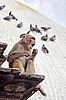 Monkey śpiew, Nepal | Stock Foto