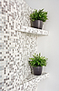 Part of interior with mosaic and green plants | Stock Foto
