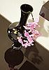 ID 3016747 | Vase mit Orchidee Blume | Foto mit hoher Auflösung | CLIPARTO