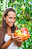 Beautiful lady in the garden with apples | Stock Foto