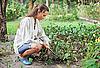 ID 3016792 | Junge Frau mit Hacke im Garten | Foto mit hoher Auflösung | CLIPARTO