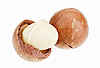 Shelled and unshelled macadamia nuts on white  | Stock Foto
