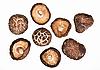 干白菇场 | 免版税照片