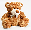 Furry teddy bear | Stock Foto