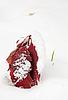 ID 3016915 | Czerwone liście dębu pokryte pierwszym śniegiem | Foto stockowe wysokiej rozdzielczości | KLIPARTO