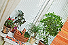 Photo 300 DPI: Picnic basket and flowerpots on window-sill