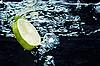 近地表水中的石灰片(柠檬)走低 | 免版税照片