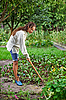 Photo 300 DPI: Young woman with hoe working in the garden