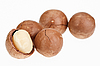 去壳和带壳的坚果坚果孤立白色 | 免版税照片