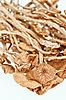 的干蜜(童话环)白蘑菇孤立 | 免版税照片