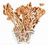 干蘑菇蜜环菌在玻璃碗   免版税照片
