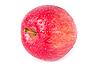 ID 3017317 | Dojrzałe czerwone jabłko z kropli wody | Foto stockowe wysokiej rozdzielczości | KLIPARTO