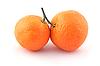 Two ripe mandarines   Stock Foto