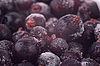 ID 3017523 | Frozen black currant | High resolution stock photo | CLIPARTO