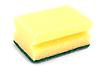 Photo 300 DPI: Yellow sponge