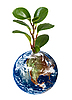 Photo 300 DPI: Earth planet with plant