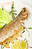 Trout fish | Stock Foto