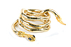 Photo 300 DPI: golden snake bracelet