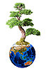 Photo 300 DPI: Bonsai on globe