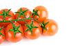 Tomatoes | Stock Foto