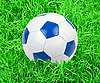 Photo 300 DPI: Soccer ball in grass