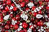 樱桃珠宝 | 免版税照片