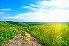 Summer landscape with rural road | Stock Foto