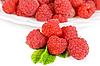 Fresh raspberry | Stock Foto