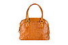 Brown women bag | Stock Foto