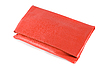Photo 300 DPI: handbag clutch