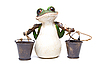 Frog with buckets  | Stock Foto