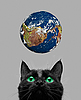 Cat playing with earth globe | Stock Foto