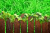 나무 갈색 울타리 | Stock Foto