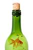 Foto 300 DPI: Flasche Wein und Goldfisch