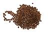 ID 3031555 | 커피 콩 | 높은 해상도 사진 | CLIPARTO
