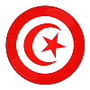 Tunisia icon with flag | Stock Illustration