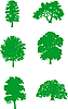 Vector clipart: Green trees