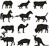 Vector clipart: animal silhouettes