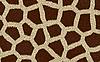 Photo 300 DPI: giraffe texture background