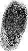 Vektor Cliparts: Fingerabdruck