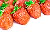 草莓 | 免版税照片