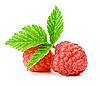 山莓 | 免版税照片