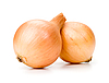 Two onions | Stock Foto
